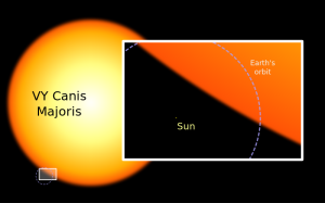 A comparison between the hypergiant, our sun and Earth's orbit. (Credit: WikiMedia)