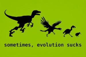 funny-evolution-of-dinosaurs
