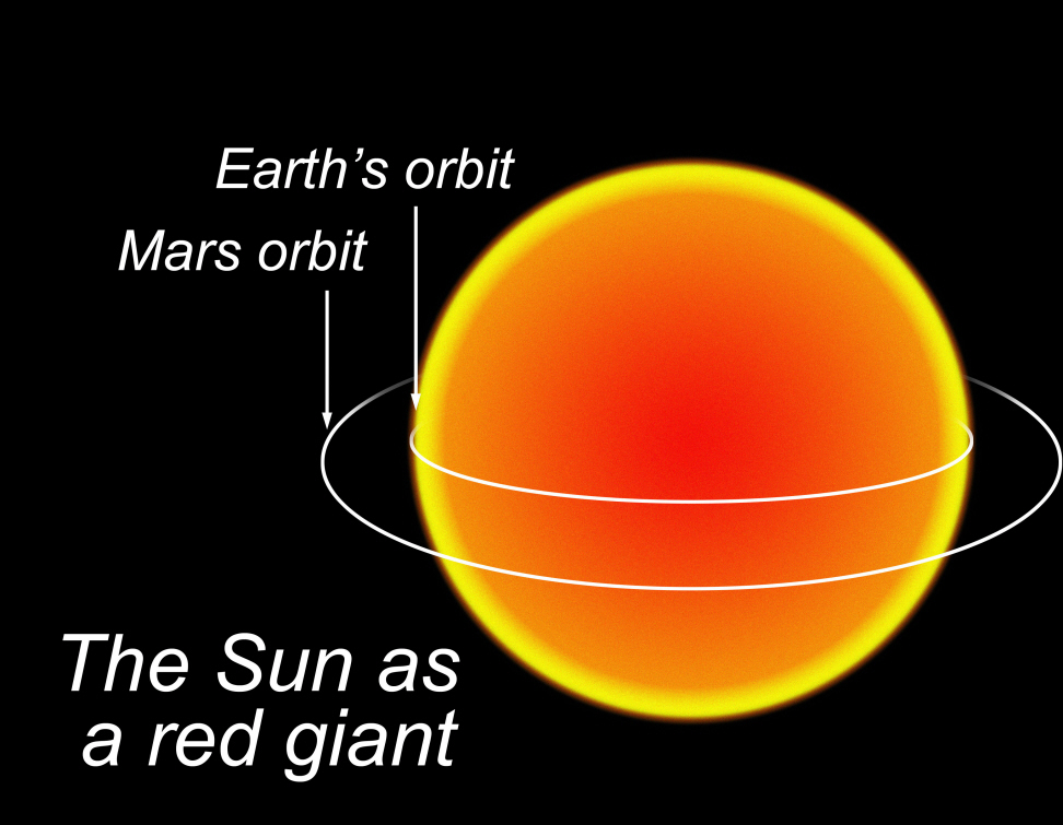 Image result for red giant sun