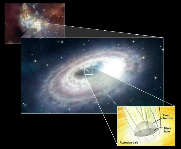 The Structure of a Black Hole