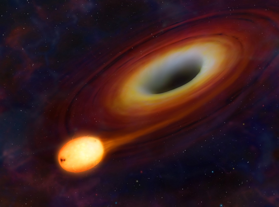 A star about to be consumed by a black hole via University of Warwick / Mark A. Garlick