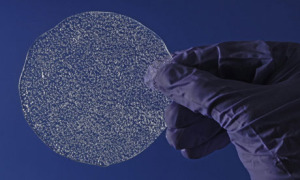 An example of ice bubbles (Credit: British Antarctic Survey/PA)