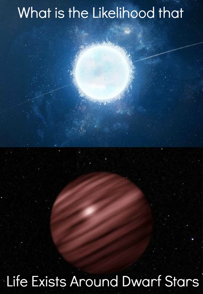 Life Around Dwarf Stars