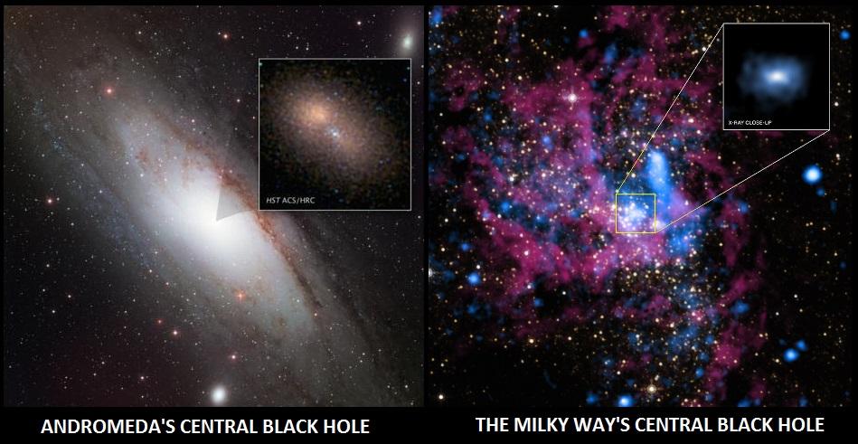 The Central Black Holes of Milkdomeda