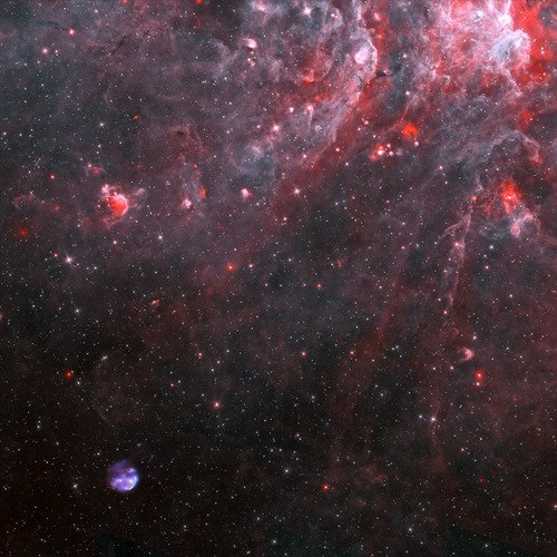 Image Credit: X-ray: NASA/CXC/Univ. of Michigan/M. Reynolds et al; Infrared: NASA/JPL-Caltech; Radio: CSIRO/ATNF/ATCA