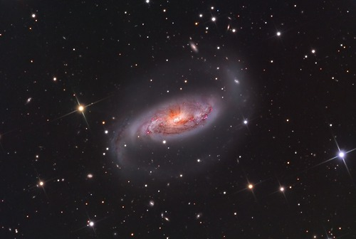 Image Credit: Star Shadows Remote Observatory (SSRO)