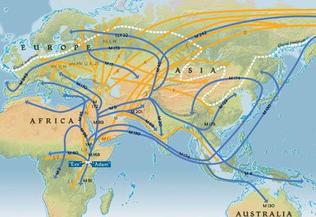 A map shows human migration routes beginning about 100,000 years ago, based on mitochondrial (yellow) and Y-chromosome (blue) DNA evidence collected by the National Geographic Society's Genographic Project and other sources.