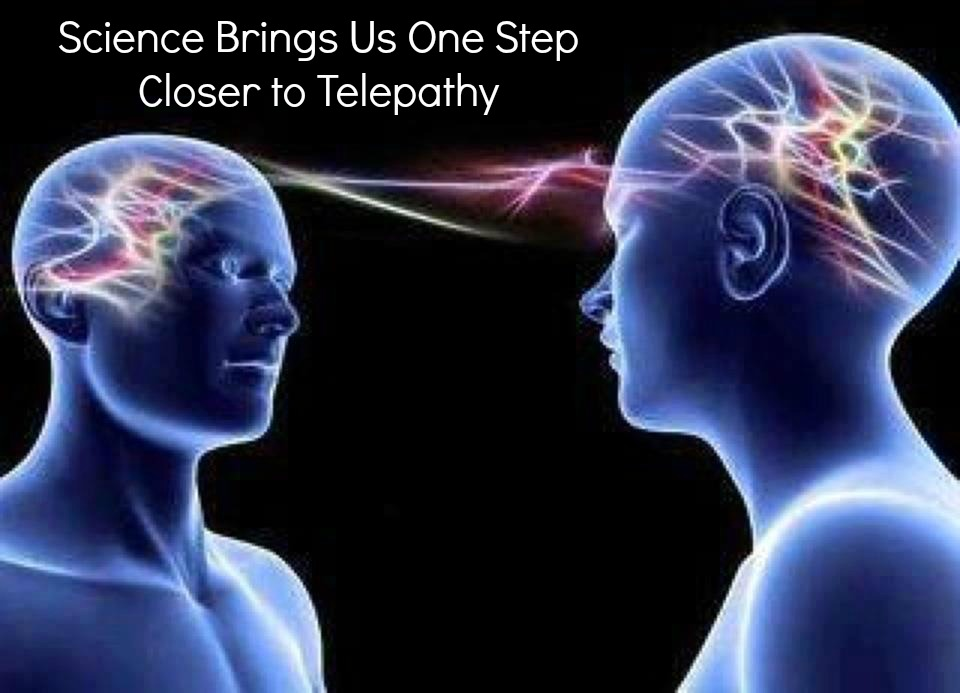 brain_to_brain1