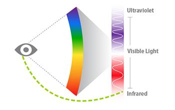 A handy graphy that shows what forms of light the human eye can readily see (Image Credit: Sara Dickherber)