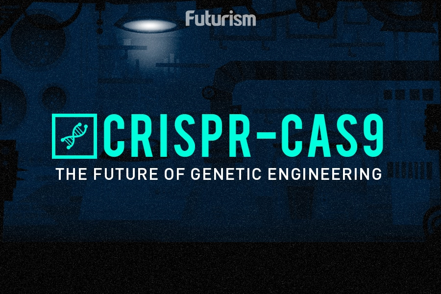 How CRISPR Works: The Future of Genetic Engineering and Designer Humans