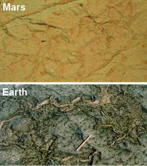 Comparison of cracks in Gillespie Lake outcrop on Mars and in a modern microbial mat in Bahar Alouane, Tunisia. Credit: Mars image: NASA; Earth image: Nora Noffke