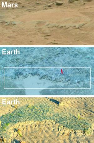 Potential MISS erosional remnant on Mars (top); edge of a microbial mat–overgrown erosional remnant on Portsmouth Island, USA (middle); erosional remnant of a modern MISS on Mellum Island, Germany (bottom). Credit: Mars: NASA; Earth: Nora Noffke Read more at: http://phys.org/news/2015-01-potential-ancient-life-mars-rover.html#jCp