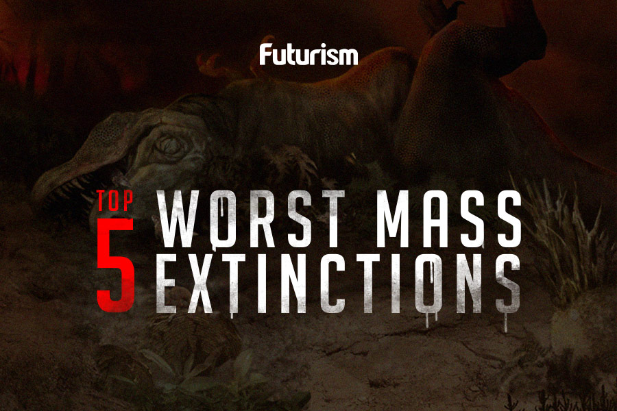 The World's Worst Mass Extinctions