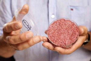 Lab-grown, stem cell burger. Image Credit: http://gizmodo.com/