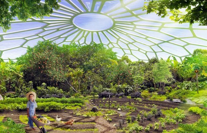 A perma-greenhouse allows the compound to raise fruits and other crops. Credit: Vincent Callebaut Architectures