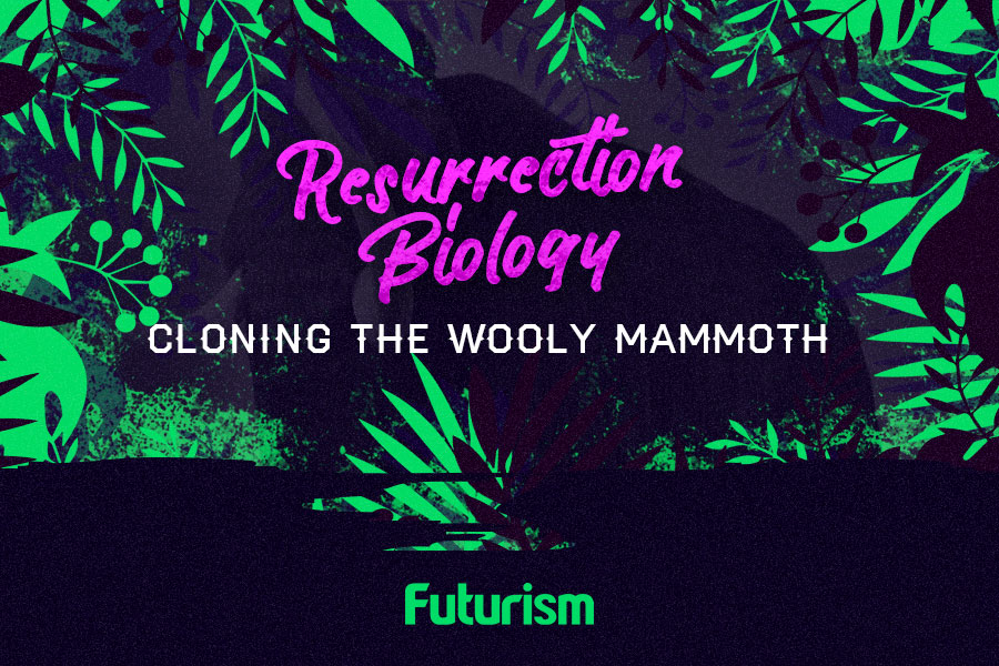 Resurrection Biology: Cloning the Wooly Mammoth