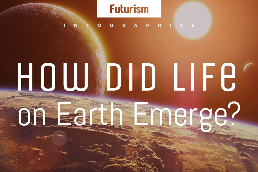 How Life Evolved on Earth (Infographic)