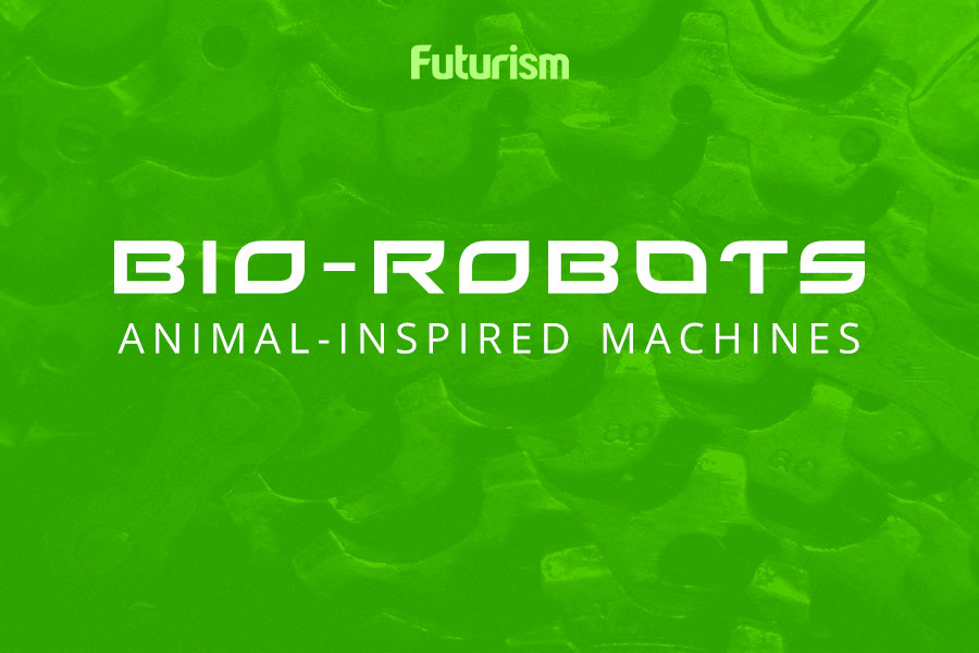 Bio-Robots: Animal-Inspired Machines