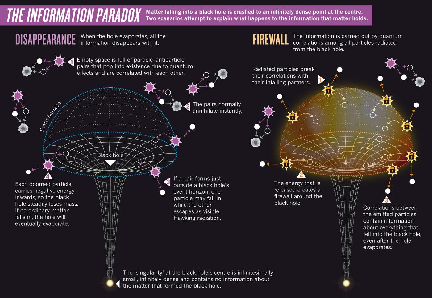 Information Paradox. Nature Publishing Group