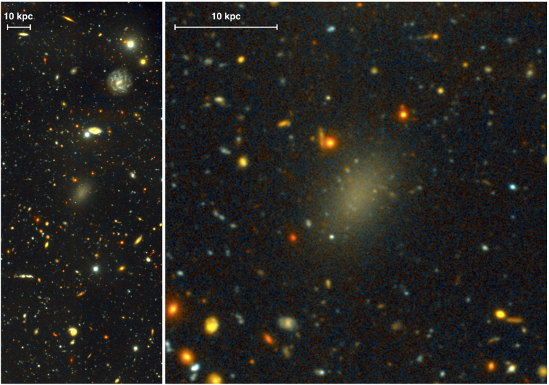 Dark galaxy Dragonfly 44 taken using the Gemini Multi-Object Spectrograph (GMOS). Dragonfly 44. The image on the left is a wide view of the galaxy taken with the Gemini North telescope using the Gemini Multi-Object Spectrograph (GMOS). Pieter van Dokkum, Roberto Abraham, Sloan Digital Sky Survey.