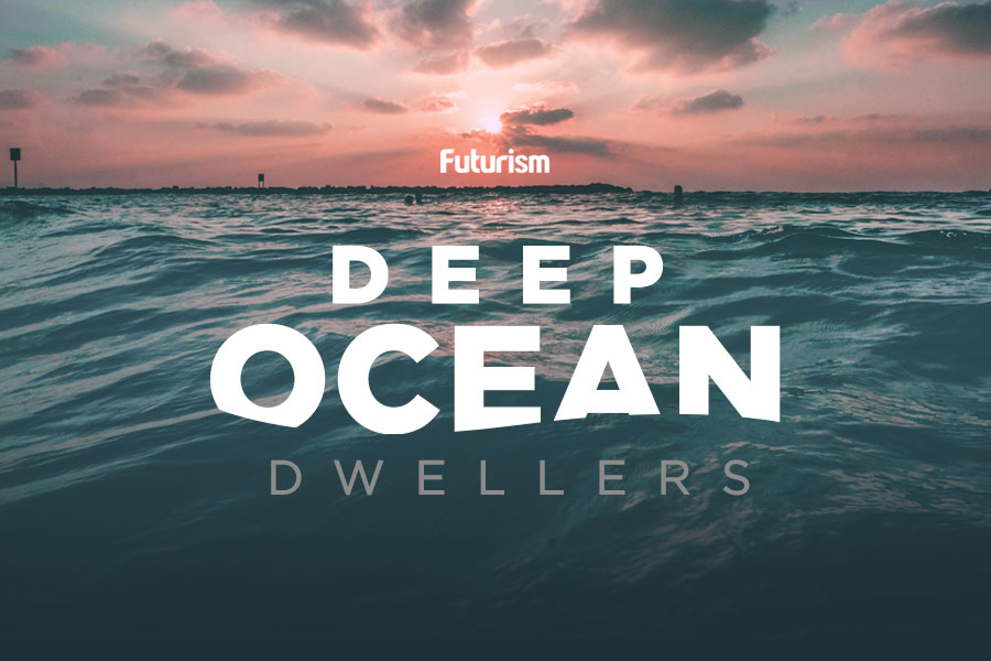 Deep Ocean Dwellers [INFOGRAPHIC]
