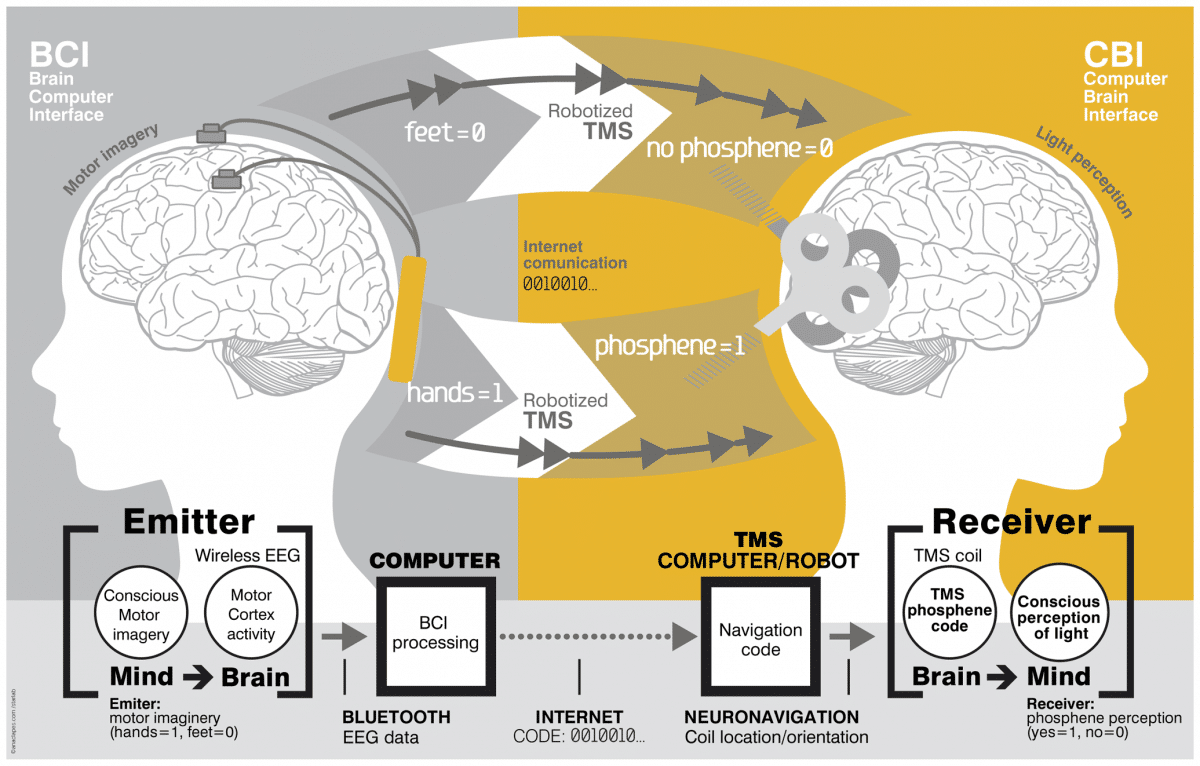 An overview of the brain-to-brain interface. Image: PLOS One