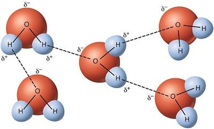 Hydrogen bonds. Wikimedia Commons, CC BY-SA