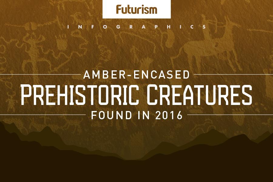 Amber Encased Prehistoric Creatures Found in 2016
