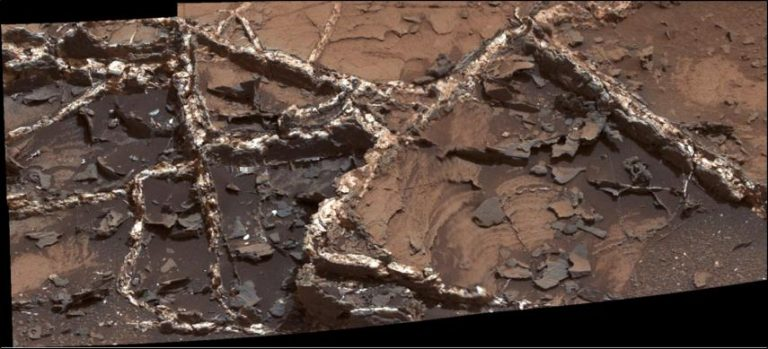 "Mineral veins at the ""Garden City"" site, examined by NASA's Curiosity Mars rover. Credit: NASA/JPL"