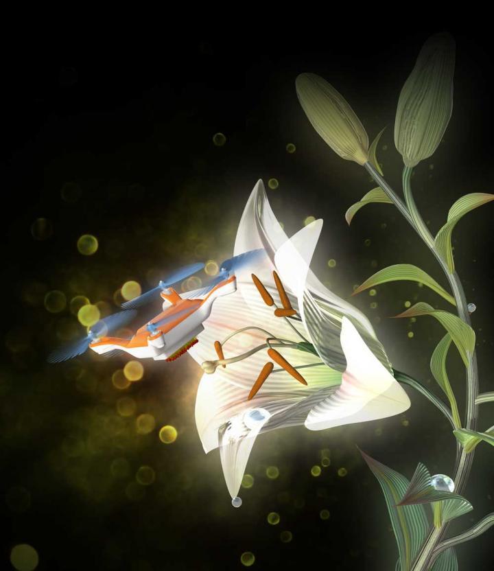 Image credits: Eijiro Miyako
