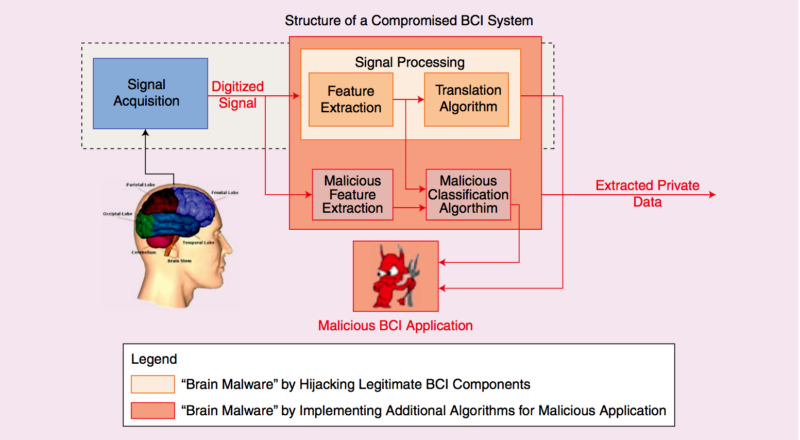 Adiagram of a brain-connected interface system. Photo Credit: Bonaci