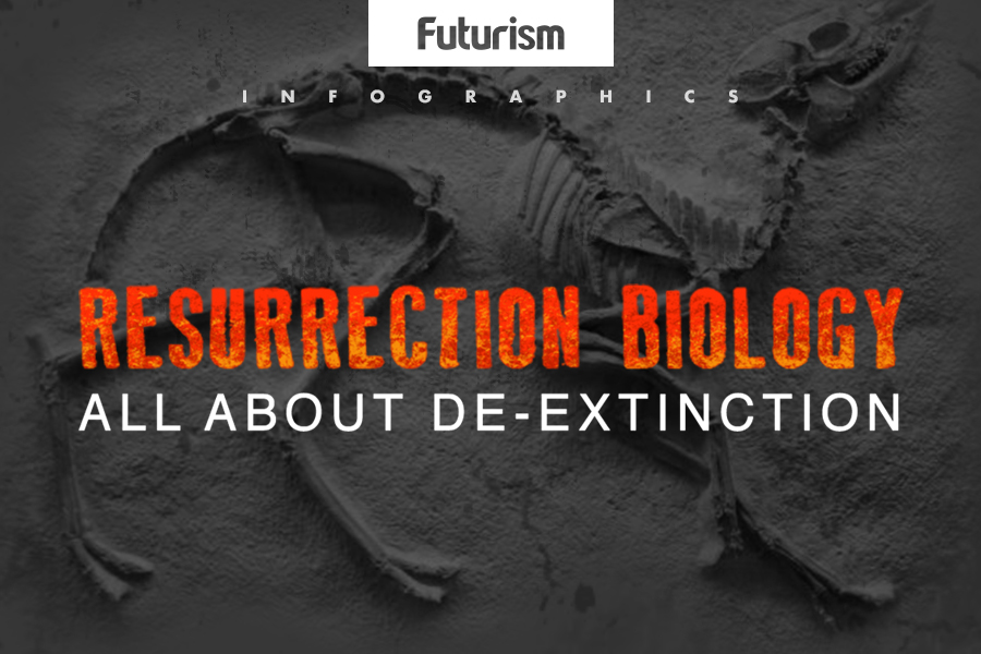 Resurrection Biology: All About De-Extinction