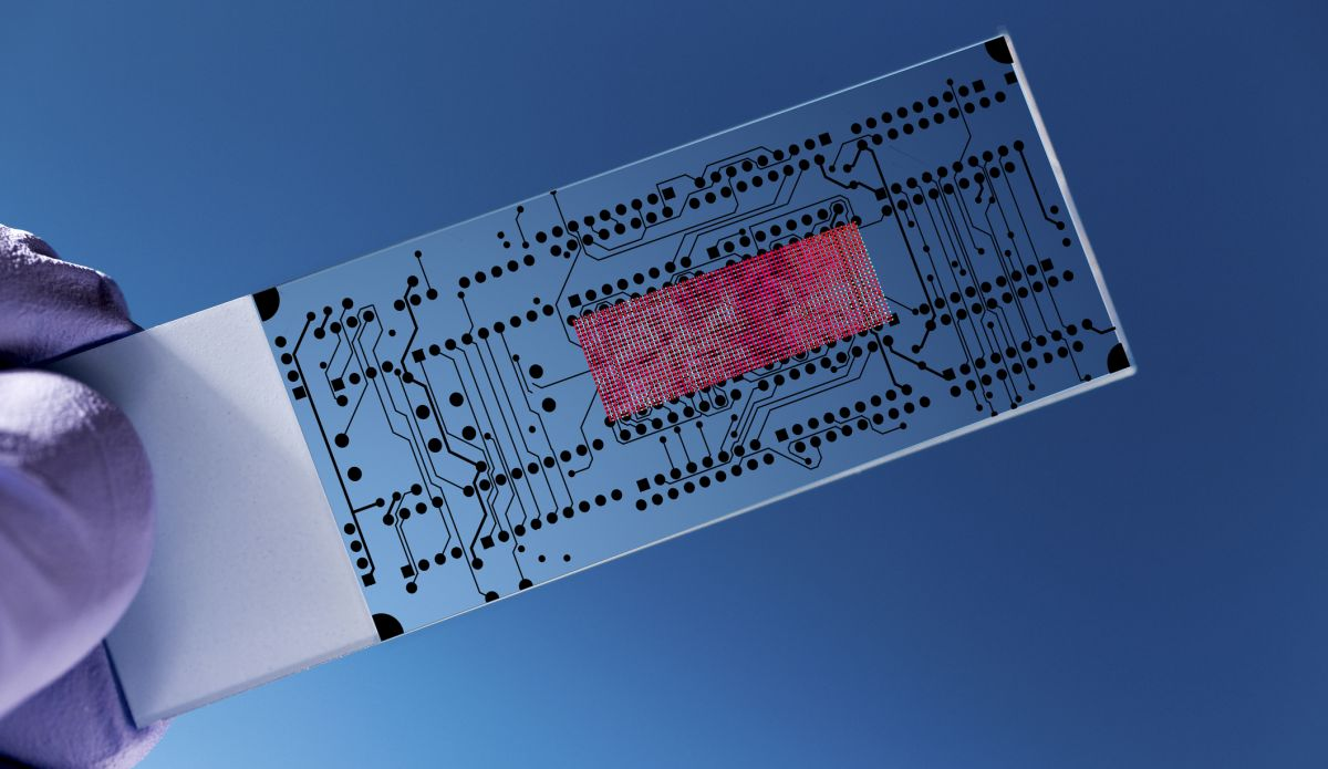 material science solar cells technology
