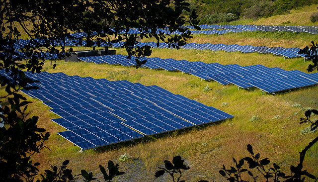 U.K.'s largest solar farm