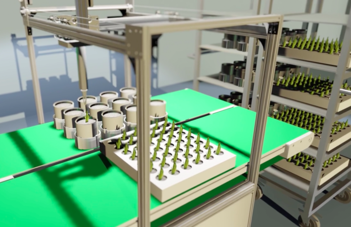 Automated robots will regulate plant growth and health. Image Credit: Plantagon