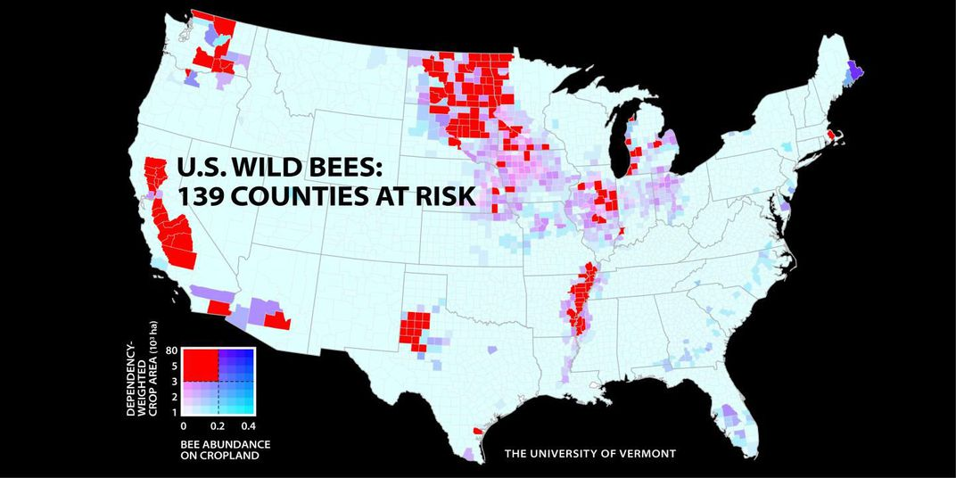 Dwindling U.S. bee populations. Image Credit: University of Vermont / PNAS