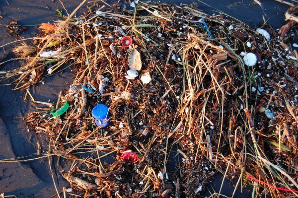 ocean life plastic waste united nations un