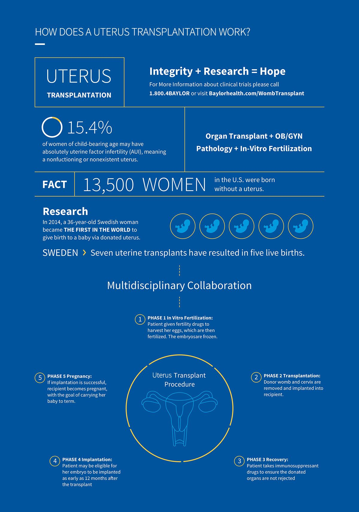Uterus transplant infographic. Image Credit: Baylor University Medical Center at Dallas