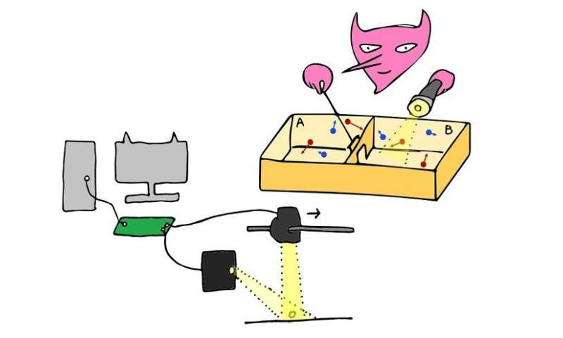 An artist's interpretation of the experiment. Image Credit: Govind Paneru and coauthors.
