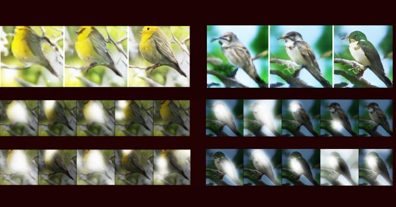 Microsoft's AI Image Generator Construct Life-Like Pictures