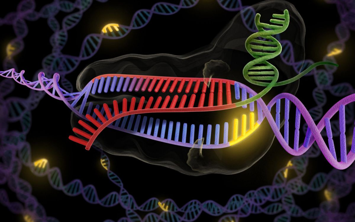 Future of CRISPR - Benefits of Gene Editing | Futurism