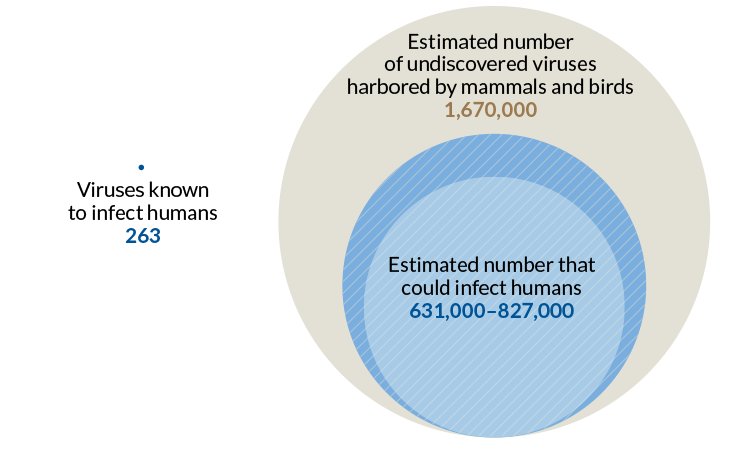 The number of viruses known to infect people is less than 0.1 percent of the total that could potentially do so. Image Credit: D. CARROLL ET AL/SCIENCE 2018