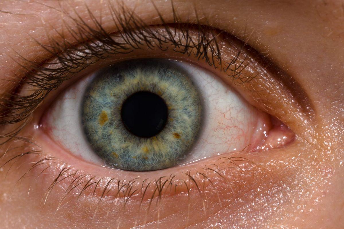 """""""Nanodrops"""" That Repair Corneas May Ultimately Replace Glasses"""