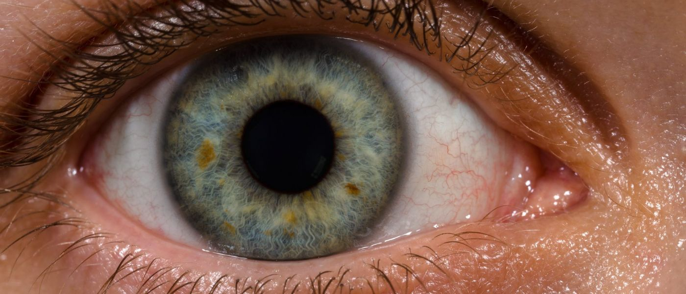 """Nanodrops"" That Repair Corneas May Ultimately Replace Glasses"