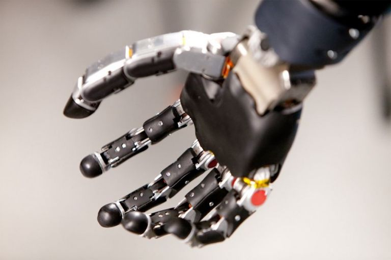 Florida Man Becomes First Person to Live With Advanced Mind-Controlled Robotic Arm