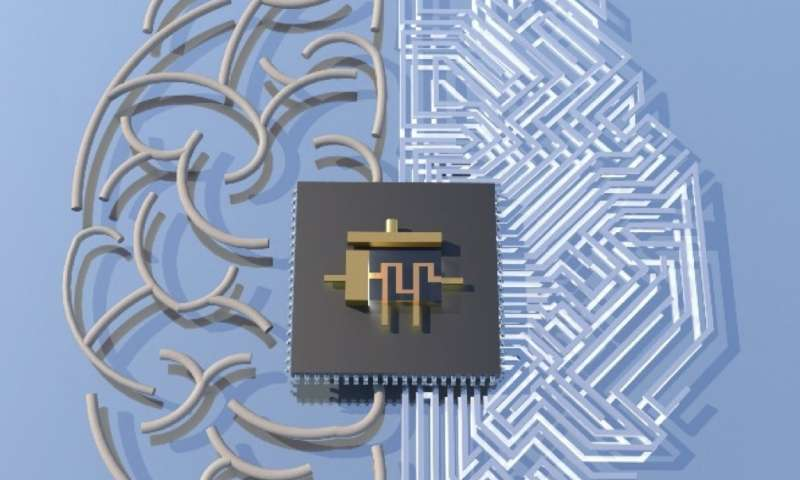 """An artist's depiction of the memtransistor, which looks something like a gray square computer chip, in between two halves of a """"brain."""" Image Credit: Hersam Research Group"""