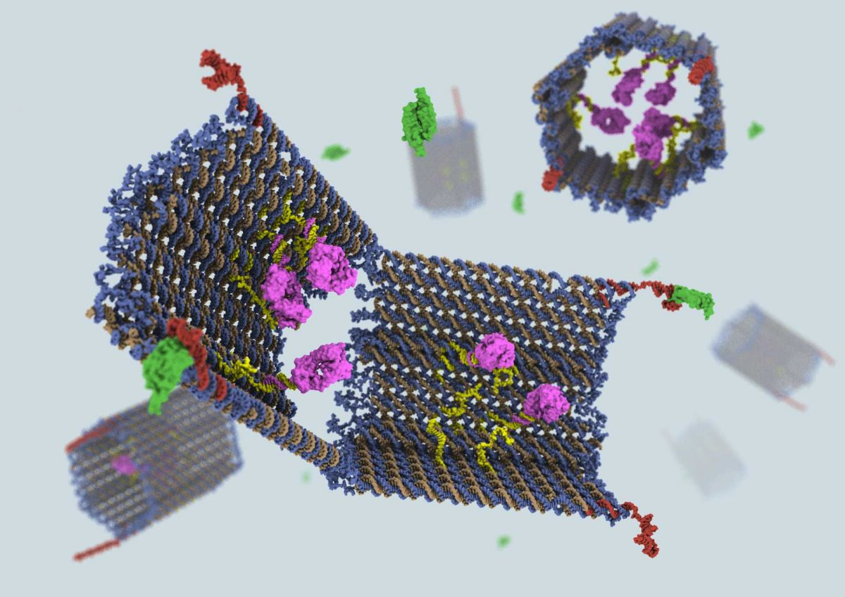 New nanobots kill cancerous tumors by cutting off their blood supply