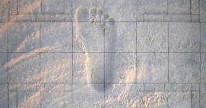 Researchers have created an AI that can identify a person with 92 percent accuracy after recording just seven consecutive footsteps.