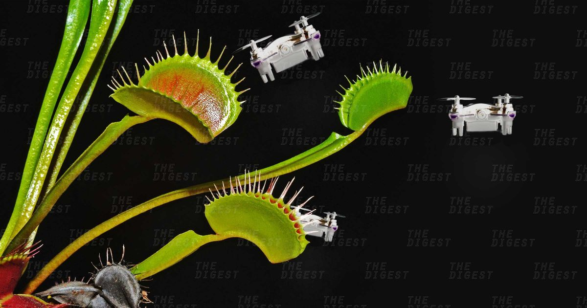 A Venus Flytrap Like System Could Help Military Drones
