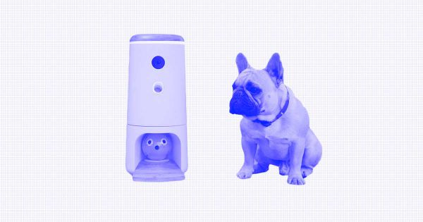 Show Your Four-Legged Friends You Care With These High-Tech Pet Gifts